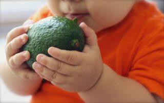 Dieta dla mózgu dziecka